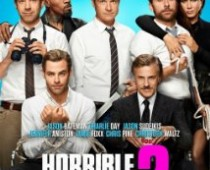 Horrible Bosses 2*